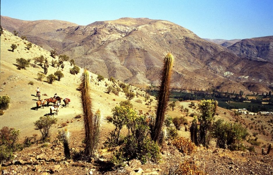 hacienda-los-andes_valle-del-rio-hurtado-1024x655